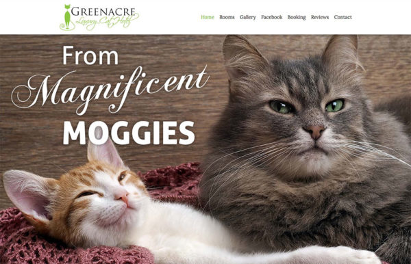 Greenacre Luxury Cat Hotel