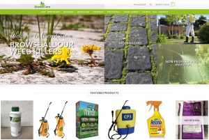 cost effective web design in southport